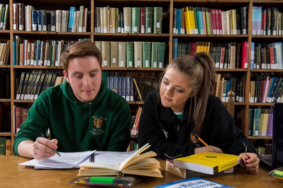 Two students studying in the Shankland Library