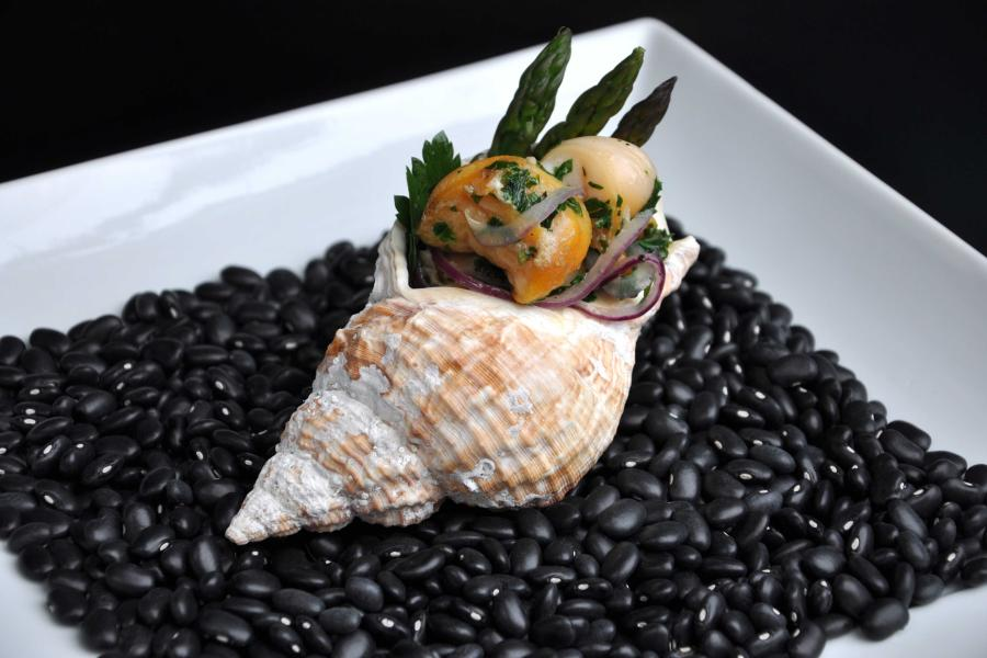 a cooked whelk on a bed of black beans on a square white plate